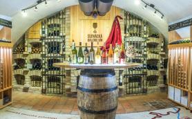 Panoramatická fotka Slovácké galerie vín v Kyjově